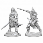 Wzk72596 Human Male Fighter Patfinder Miniatures Unpainted Minis