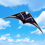 BRS72452 Purple NK-93 Passport Stunt Competition Sport Kite