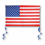 BRS72110 American Flag 48 Inch Vinyl Kite Brainstorm Products